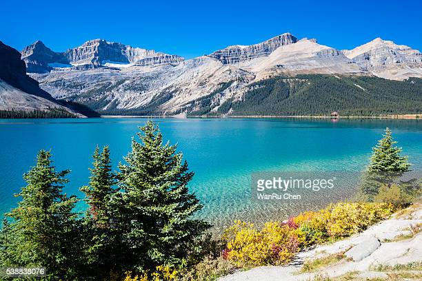 Beautiful Bow Lake of the Canadian Rockies