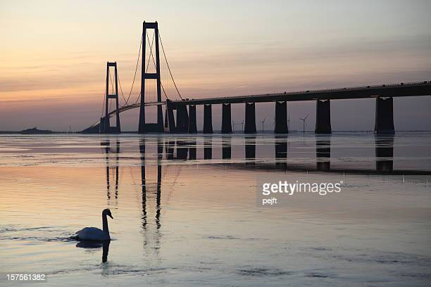 A beautiful bridge at sunset with a swan in the water