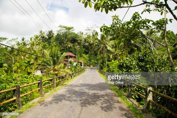 Beautiful bridge crossing river with stunning vegetation in the island of Bali during road trip in Indonesia.