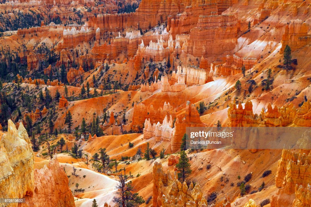 View of an amphitheater at the beautiful Bryce Canyon National Park.