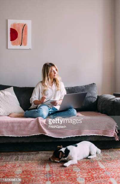 bella donna d'affari che lavora a casa con il suo cane - dog pad foto e immagini stock