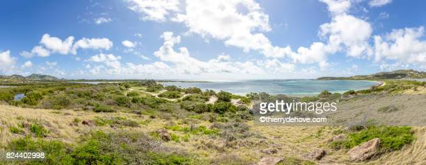 beautiful caribbean beaches from saint martin, sint maarten caribbean - guadeloupe photos et images de collection