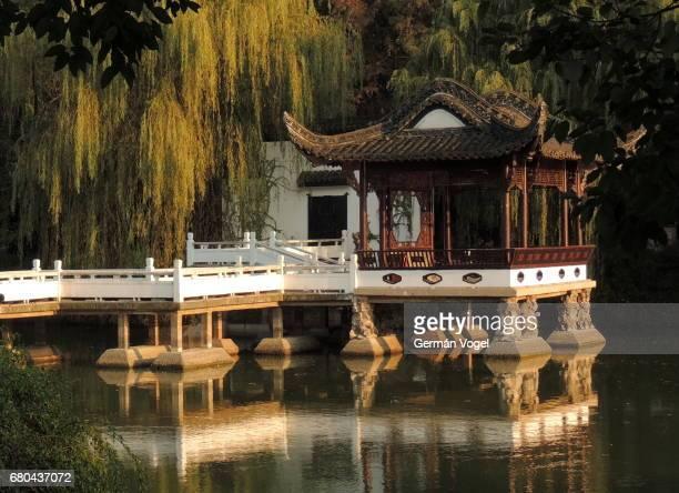 Beautiful Chinese bridge and pavilion in willow tree park - Baohe, Hefei, China