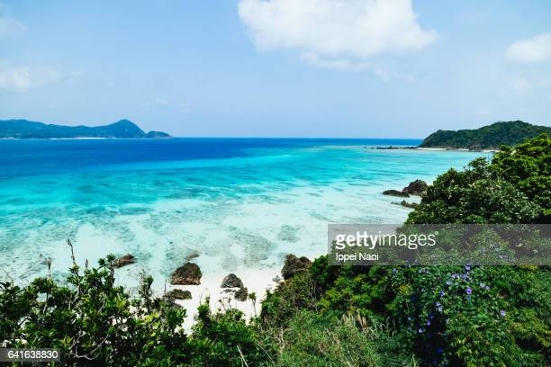 Beautiful coastline with clear tropical sea, Amami Oshima Island, Japan