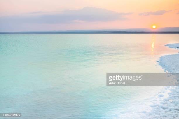 beautiful colorful dead sea during sunset with tranquil scene. - dead sea stock pictures, royalty-free photos & images