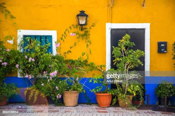 beautiful colorful streets in the south of spain with brown and blue house and vegetation with flowers during trip in the sunny andalucia. - spanish culture stock pictures, royalty-free photos & images