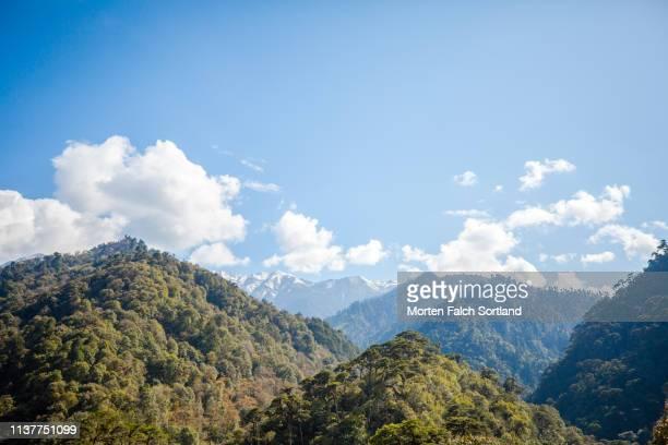 a beautiful contrast in trongsa, bhutan - trongsa district stockfoto's en -beelden