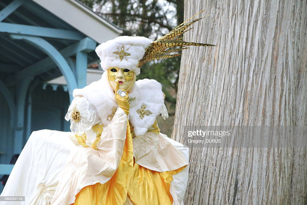 Beautiful costumed woman posing at Annecy french venetian carnival outdoor : Bildbanksbilder