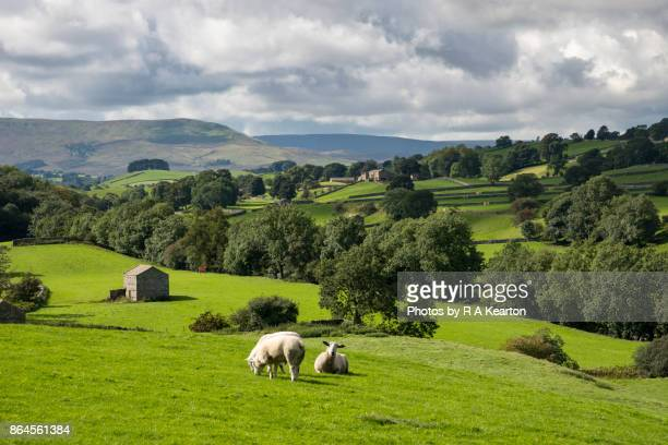 Beautiful countryside in Wensleydale, North Yorkshire, England