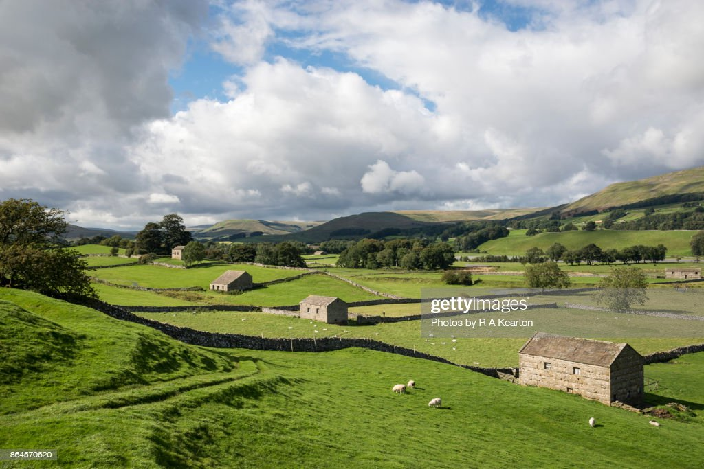 Beautiful countryside in Wensleydale, North Yorkshire, England : Stock Photo