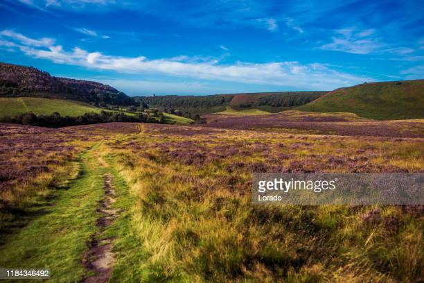 beautiful countryside landscape in the north of england - lancashire stock pictures, royalty-free photos & images