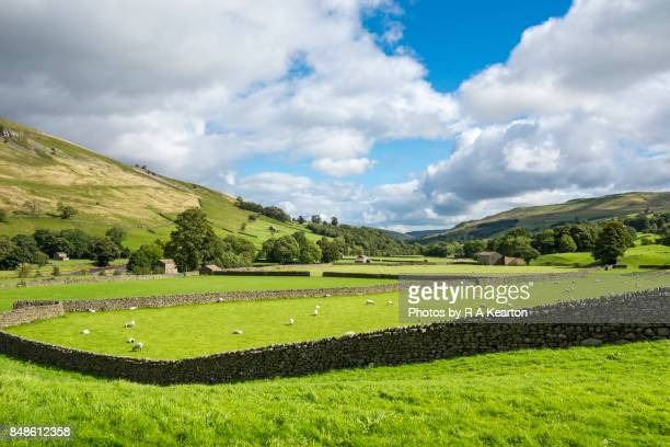 Beautiful countryside near Muker, Swaledale, Yorkshire Dales