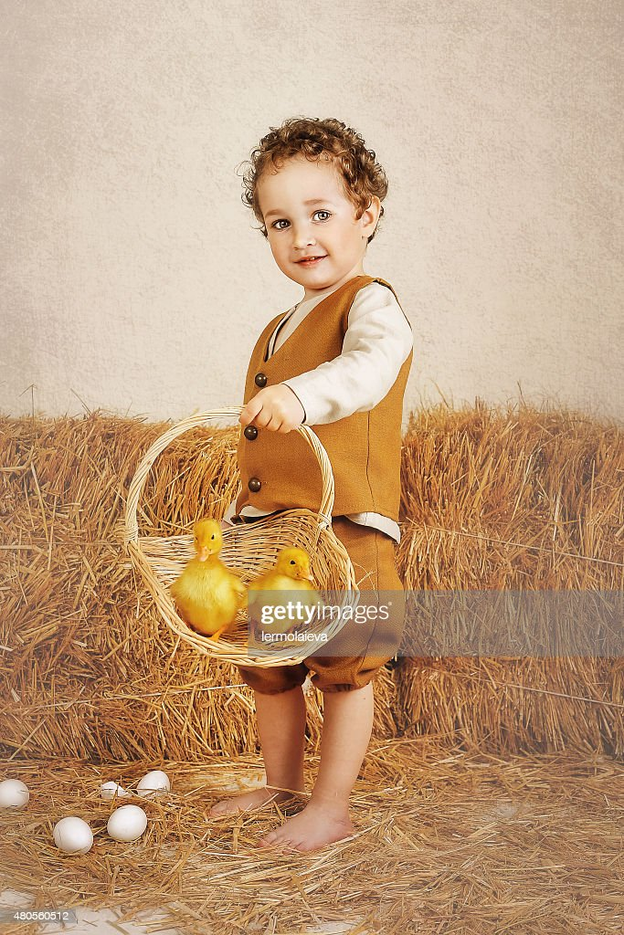 Beautiful curly-haired boy holding ducklings in a basket : Stock Photo