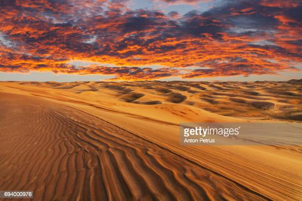 Beautiful desert landscape on the background of a fiery sunset