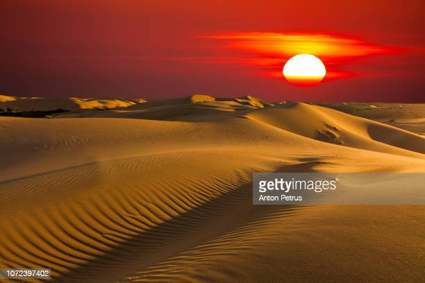 Beautiful desert landscape with a colorful sunset. Sunset sun