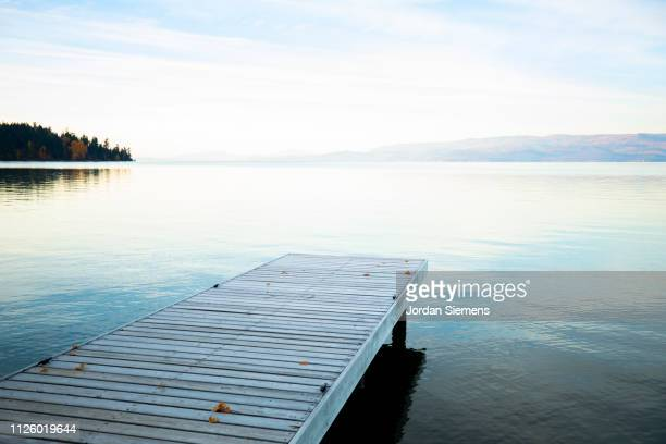 a beautiful dock on a lake at sunset - pir bildbanksfoton och bilder