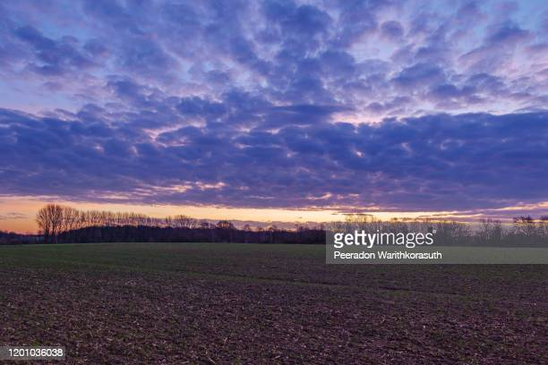 beautiful dramatic purple, pink, blue and orange cloud and sky after storm and rain over agricultural field on countryside in germany. phenomenon of sky turn pink. nimbostratus cloud during sunset. - light natural phenomenon stock pictures, royalty-free photos & images
