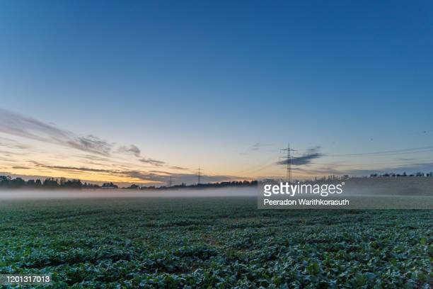 beautiful dramatic twilight with gold , orange and blue cloud and sky over misty atmosphere of foggy over agricultural field on countryside in germany during sunset time. - abenddämmerung stock-fotos und bilder