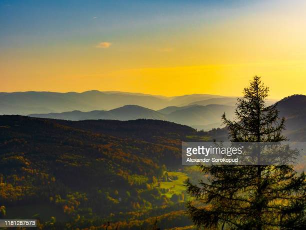 beautiful drone aerial view of the vosges mountains in alsace, france, autumn colors. - lorraine stock pictures, royalty-free photos & images