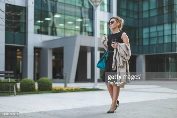 Beautiful elegant business woman