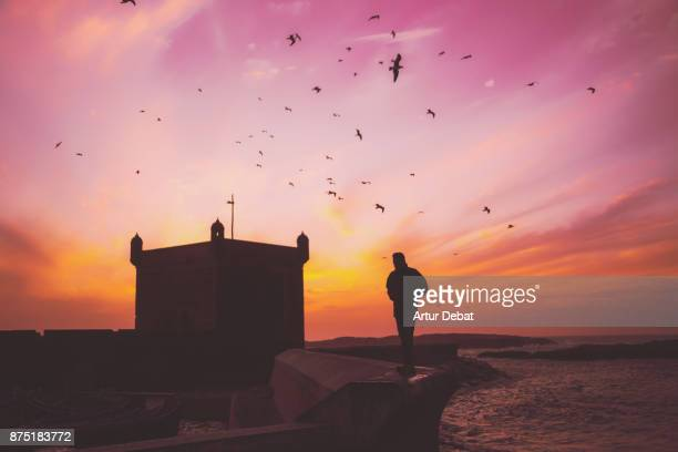 Beautiful Essaouira city with fortress when the Atlantic ocean is low during colorful sunset sky and seagulls flying in windy day with man silhouette, picture taken during travel vacations in Morocco.