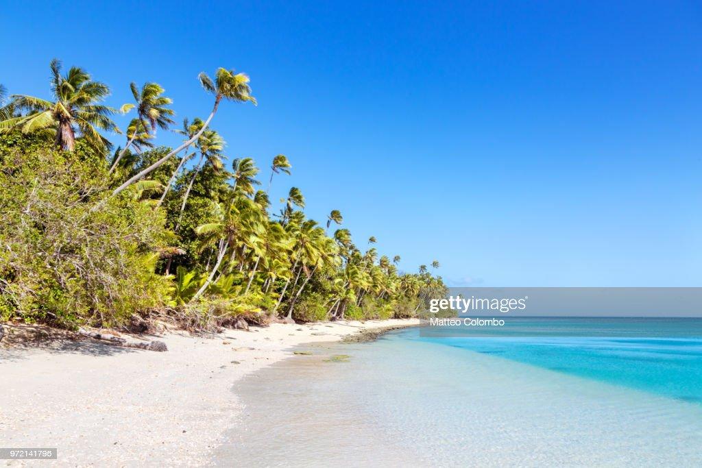Beautiful exotic sandy beach with palm trees, Fiji : Photo