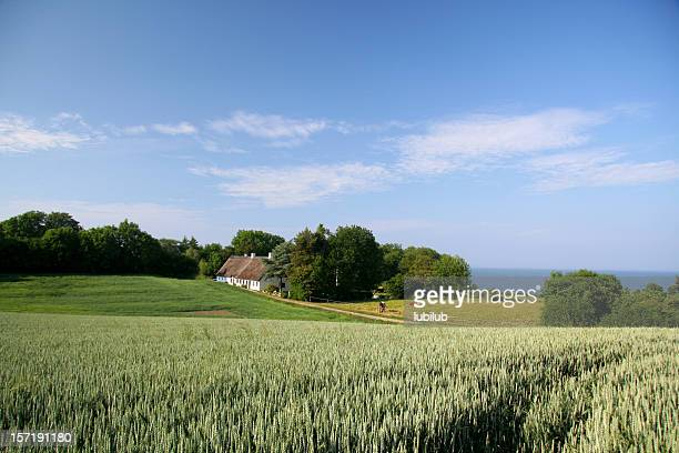 beautiful farmland, old house and sea in southern jutland, denmark - landelijke scène stockfoto's en -beelden
