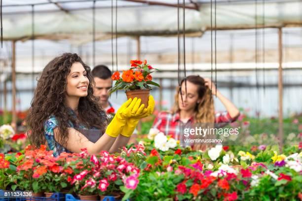 Gestionnaire de belle serre femme tenant une fleur en pot