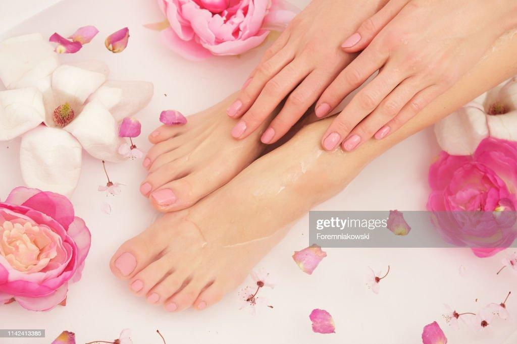 Beautiful female legs and feet. : Stock Photo