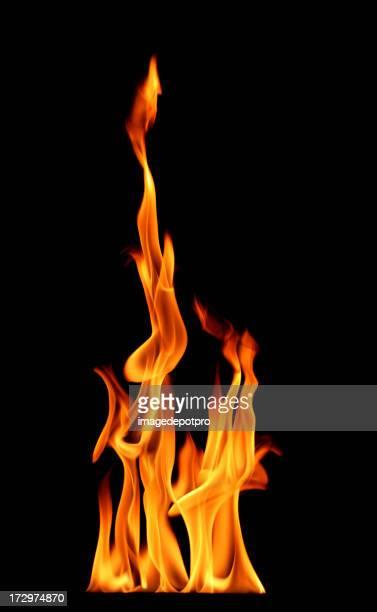 beautiful fire flame