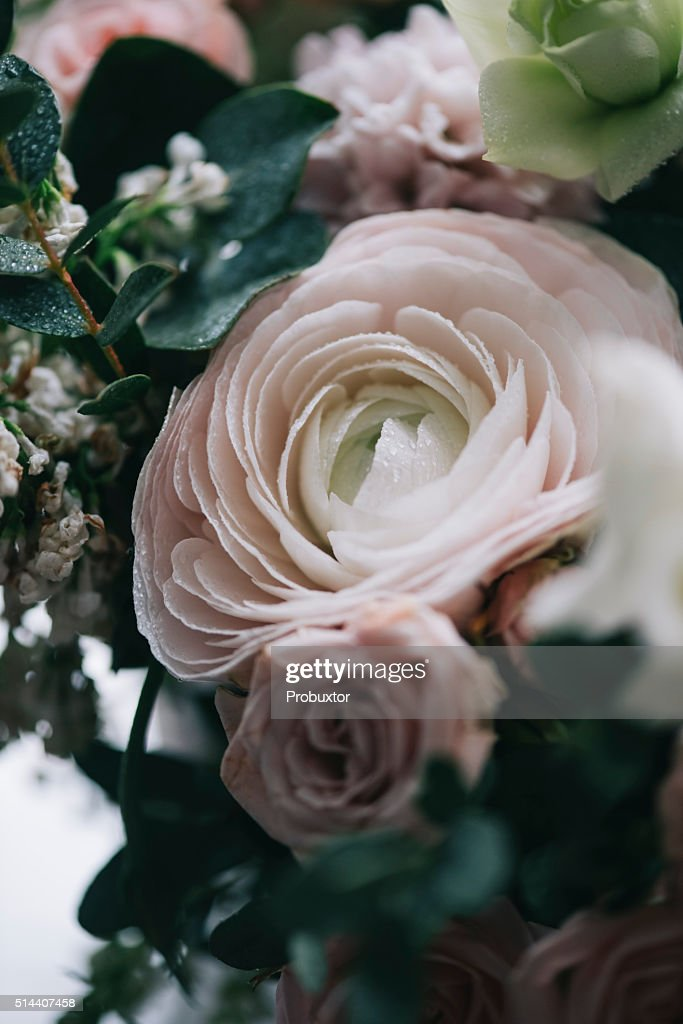 Beautiful Flower Bouquet Pink Roseseucalyptus Ranunculus High Res Stock Photo Getty Images