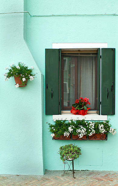 Beautiful flower boxes on a bright green house