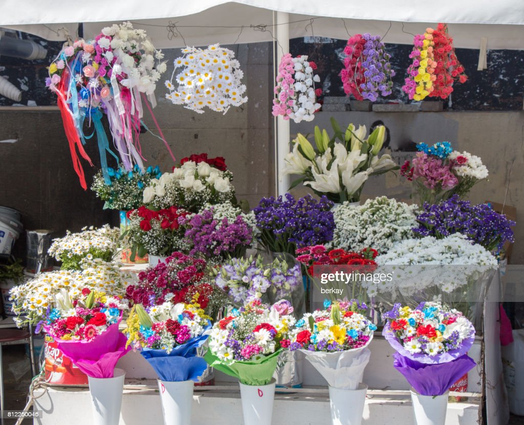 Beautiful Flowers Of Various Types Stock Photo Getty Images