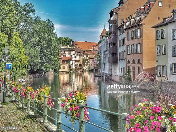 beautiful flowers on railing by river against buildings - strasbourg stock pictures, royalty-free photos & images