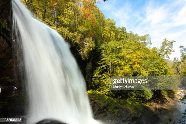 """beautiful flowing waterfall in north carolina - """"marilyn nieves"""" stock pictures, royalty-free photos & images"""