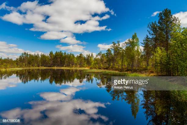 Beautiful forest lake with clouds. Finland