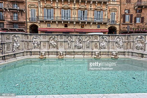 CONTENT] A beautiful fountain on Piazza del Campo Siena