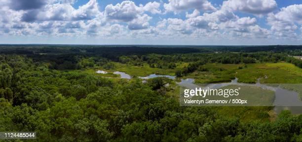 beautiful garden or park with trees aerial view of spectacular - {{asset.href}} stock-fotos und bilder