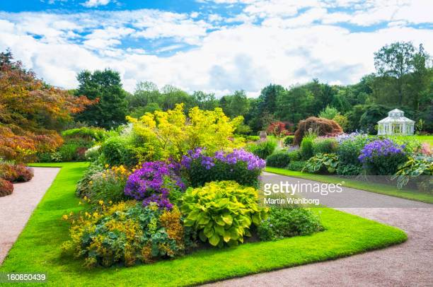beautiful garden - landscaped stock pictures, royalty-free photos & images