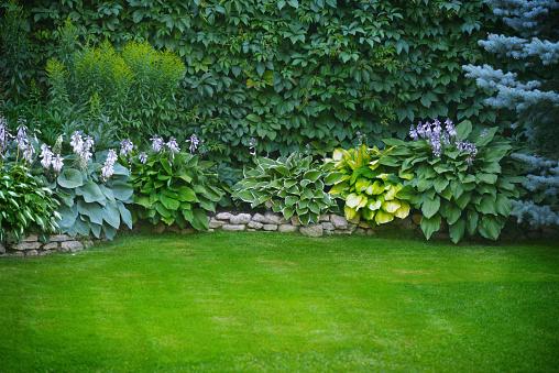 Beautiful garden with green grass 1163586960
