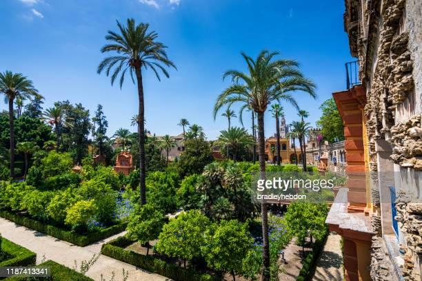 beaux jardins dans le palais royal d'alcazar à séville espagne - seville photos et images de collection