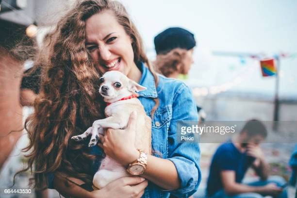 linda garota e seu cãozinho bonitinho - chihuahua raça pura - fotografias e filmes do acervo