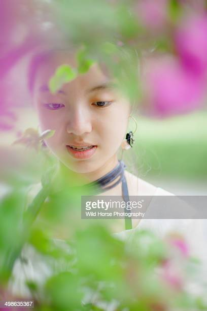 beautiful girl behind  the flowers