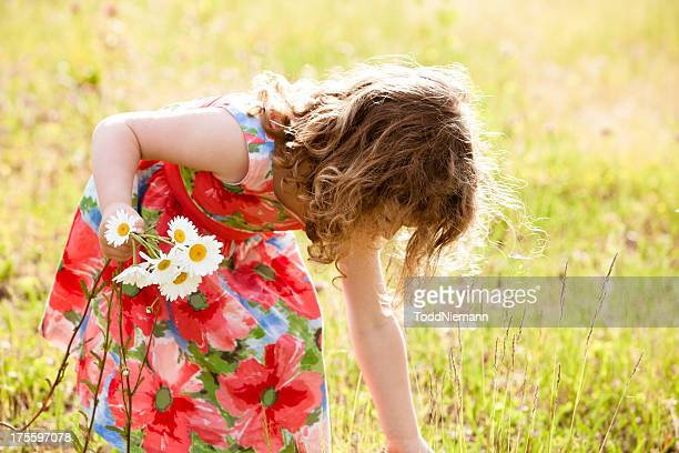 Beautiful girl picking flowers field.