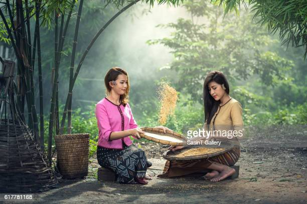 Beautiful girl winnowing rice separate