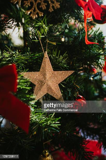 beautiful gold christmas star hanging on a christmas tree - star shape stock pictures, royalty-free photos & images