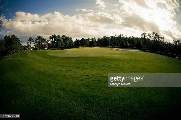beautiful golf course - florida landscaping stock pictures, royalty-free photos & images