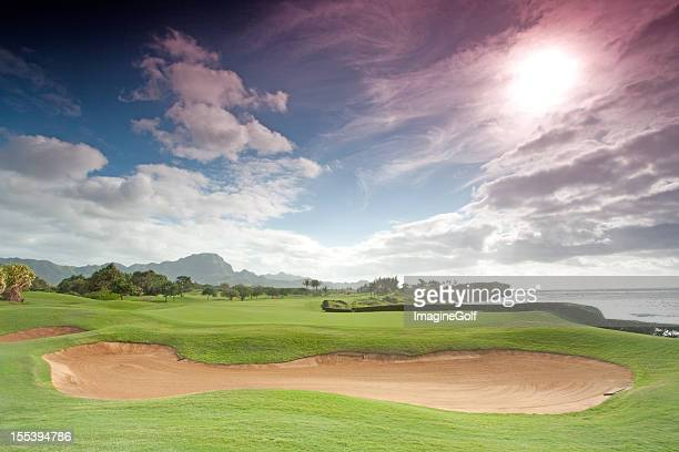 Beautiful Golf Course Scenic in Hawaii