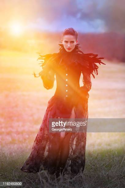 beautiful goth woman standing in field with fall colors - models in stockings stock pictures, royalty-free photos & images