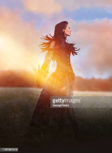 beautiful goth woman walking in field with fall colors - models in stockings stock pictures, royalty-free photos & images